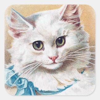 Sticker Carré Portrait blanc de chat