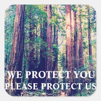Sticker Carré Protégez la forêt