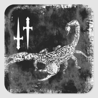 Sticker Carré Scorpion
