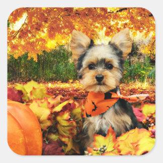 Sticker Carré Thanksgiving de chute - maximum - Yorkie