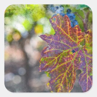 Sticker Carré Vigne pendant la saison d'automne