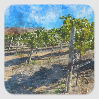 Sticker Carré Vignoble dans Napa Valley la Californie