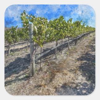 Sticker Carré Vignoble de vin dans Napa Valley