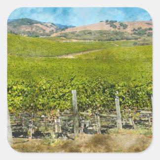 Sticker Carré Vignoble de vin de Californie