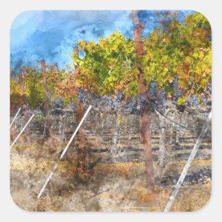 Sticker Carré Vignoble en automne dans Napa Valley la Californie