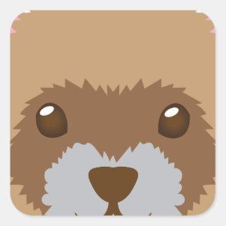 Sticker Carré visage mignon de furet