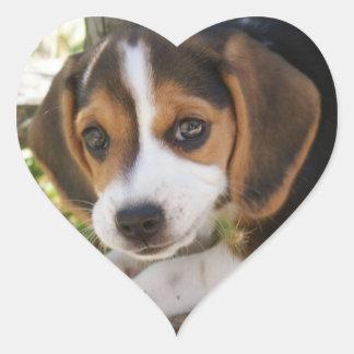 Sticker Cœur Beagle de chiot