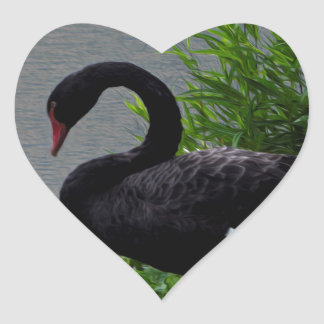Sticker Cœur Cygne noir