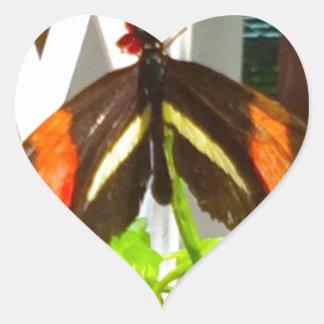 Sticker Cœur Noir de jaune orange de papillon