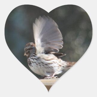 Sticker Cœur Photo de moineau de chanson sur l'autocollant fait