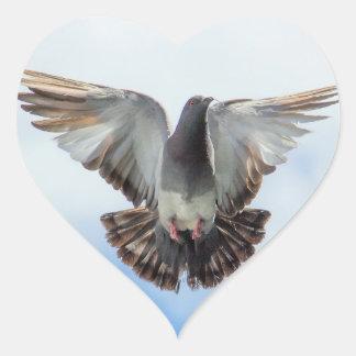 Sticker Cœur Pigeon en vol