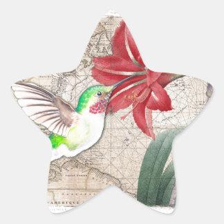 Sticker Étoile Ammaryllis de carte de Hummer II