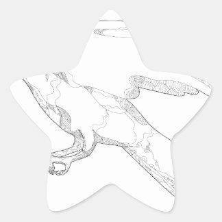 Sticker Étoile Art Swooping de griffonnage d'autour du nord