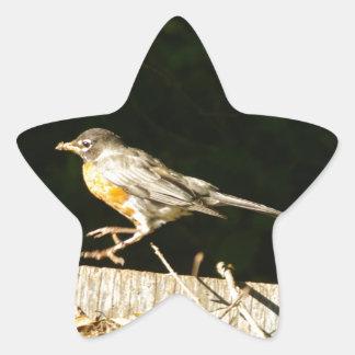 Sticker Étoile Bobine rouge de Robin