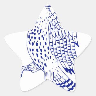 Sticker Étoile dessin de marche Pointu-shinned de faucon