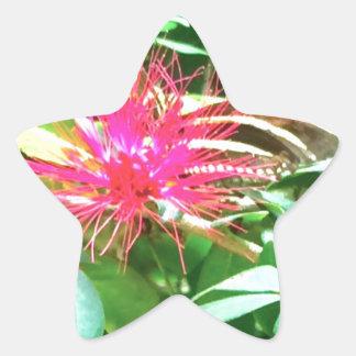 Sticker Étoile Fleur pointue rose à Key West