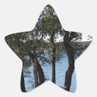 Sticker Étoile Pique-nique au lac