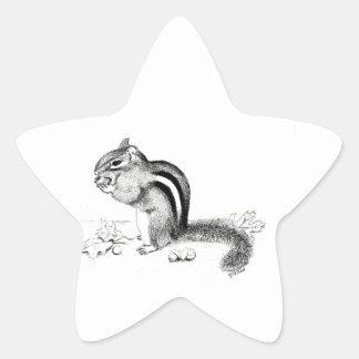 Sticker Étoile Tamia