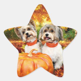 Sticker Étoile Thanksgiving de chute - maximum et Lion - Yorkies