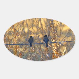 Sticker Ovale Couples romantiques d'oiseau de moineau sur un