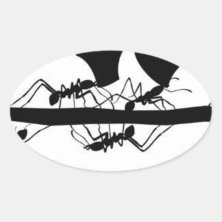 Sticker Ovale Fourmis Nicaragua de Leafcutter