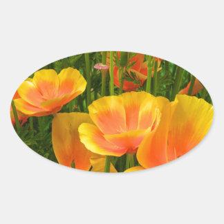 Sticker Ovale Pavots de Californie oranges/Kalifornischer Mohn