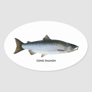 Sticker Ovale Saumon de Coho