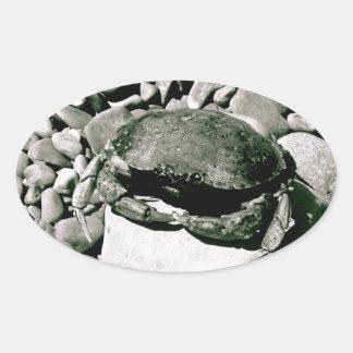 Sticker Ovale Série Crabie