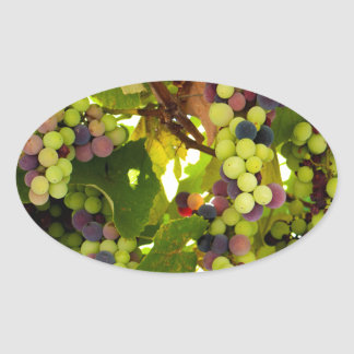 Sticker Ovale Vin croissant