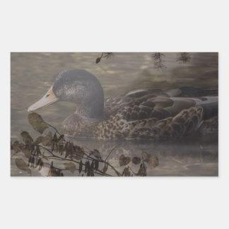 Sticker Rectangulaire Canard sauvage de pays d'étang extérieur primitif