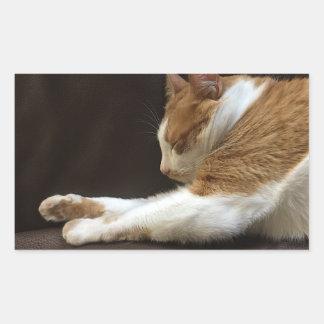 Sticker Rectangulaire Chat dormant sur le sofa
