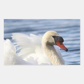 Sticker Rectangulaire Cygne muet sur l'étang