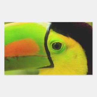 Sticker Rectangulaire Fin de visage de toucan, Belize