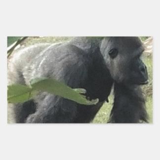 Sticker Rectangulaire Gorille de Silverback