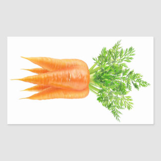 Sticker Rectangulaire Groupe de carottes