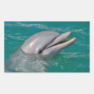 Sticker Rectangulaire Haut étroit de dauphin