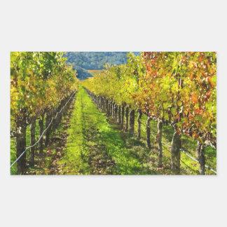 Sticker Rectangulaire Rangées des vignes dans Napa Valley la Californie
