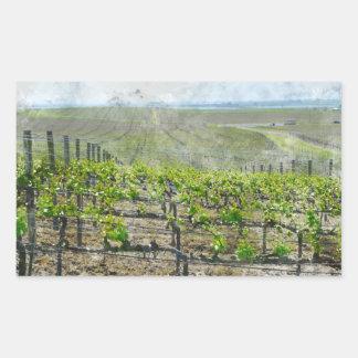 Sticker Rectangulaire Vignoble dans Napa Valley la Californie