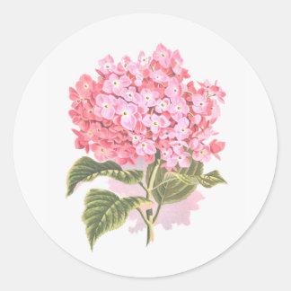 Sticker Rond Belle fleur botanique d'hortensia