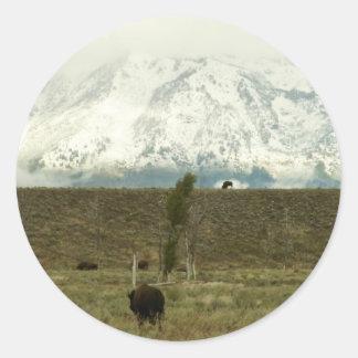 Sticker Rond Bison à la photographie grande de parc national de