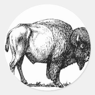 Sticker Rond Bison américain de Buffalo