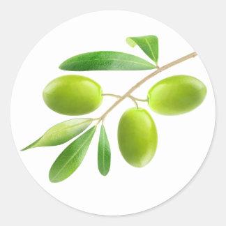 Sticker Rond Branche d'olives vertes