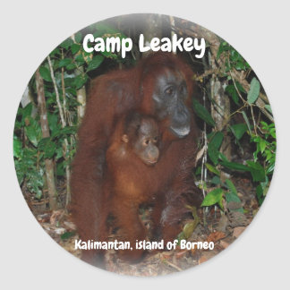 Sticker Rond Camp Leakey dans Tanjung mettant le parc national