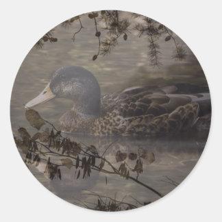 Sticker Rond Canard sauvage de pays d'étang extérieur primitif