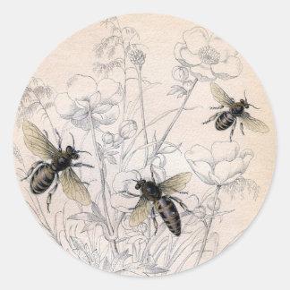 Sticker Rond Copie vintage d'art d'abeille de miel