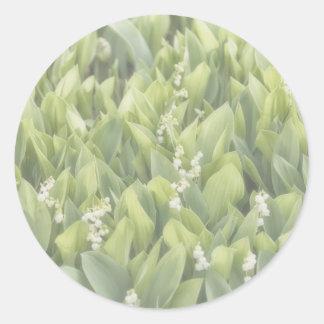 Sticker Rond Correction de fleur du muguet en brouillard