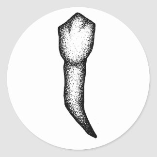 Sticker Rond Dent humaine