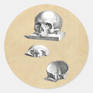Sticker Rond Dessin orthopédique de crâne et d'os