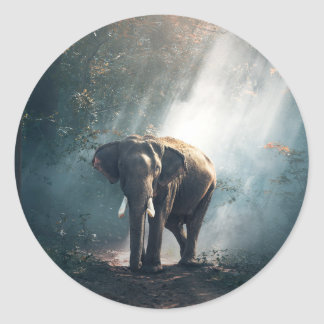 Sticker Rond Éléphant asiatique dans une clairière ensoleillée
