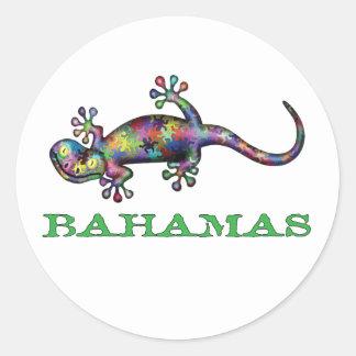 Sticker Rond Gecko des Bahamas